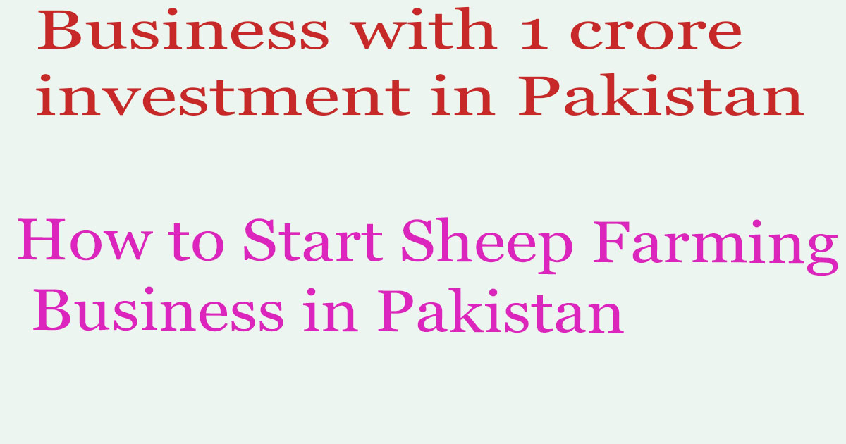 How to Start Sheep Farming Business in Pakistan